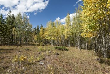 1672 Ruby ROAD SILVERTHORNE, Colorado - Image 14