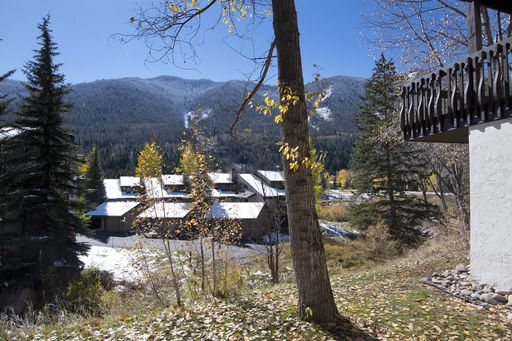 4770 Bighorn Road # P-3 Vail, CO 81657 - Image 6