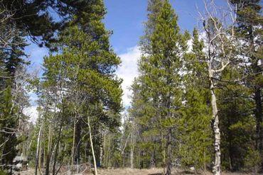 30 SERENITY COURT FAIRPLAY, Colorado - Image 7