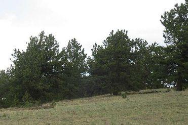 2159 ARAPAHOE TRAIL JEFFERSON, Colorado 80456 - Image 1