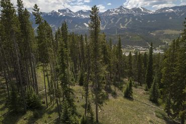 19 BEARING TREE ROAD BRECKENRIDGE, Colorado - Image 6