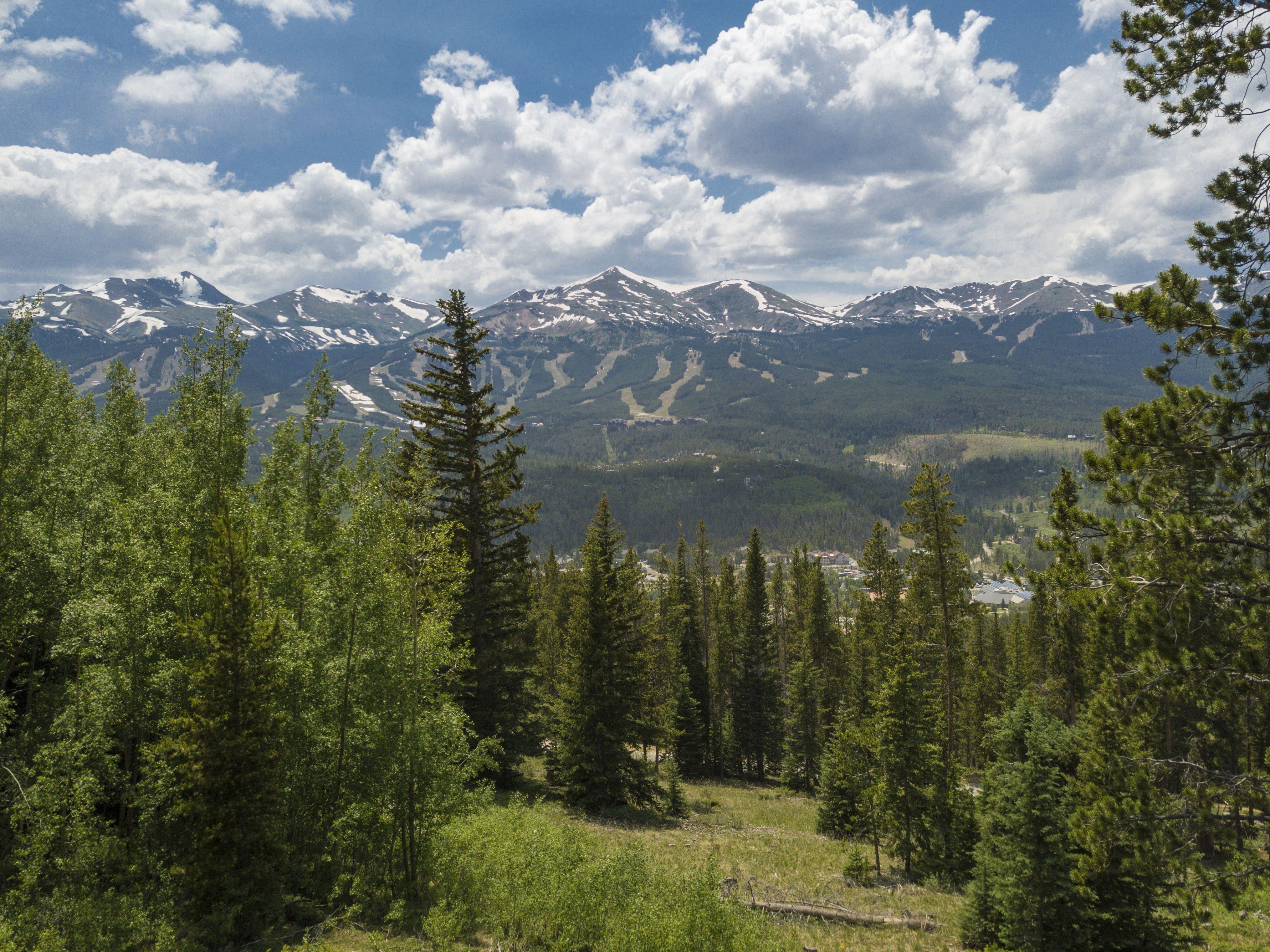 20 Bearing Tree ROAD BRECKENRIDGE, Colorado 80424