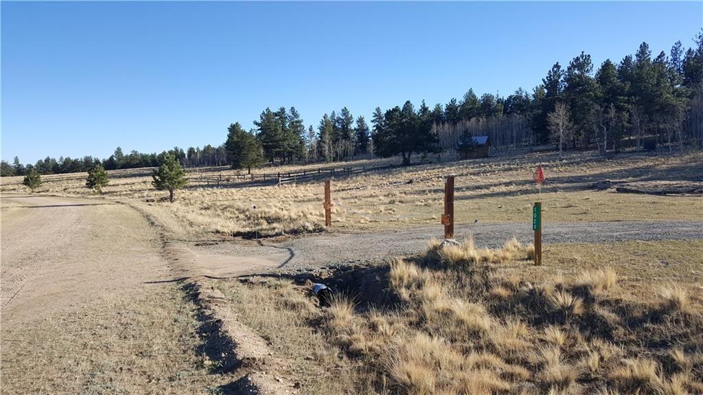 1029 SUPERSTITION TRAIL HARTSEL, Colorado 80449