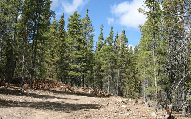 1525 Beaver Creek Road - photo 12