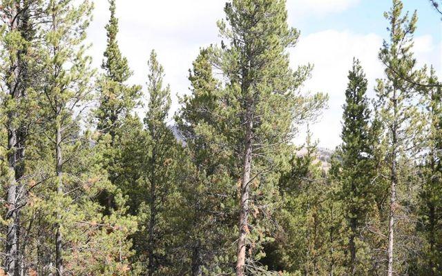 1525 Beaver Creek Road - photo 13