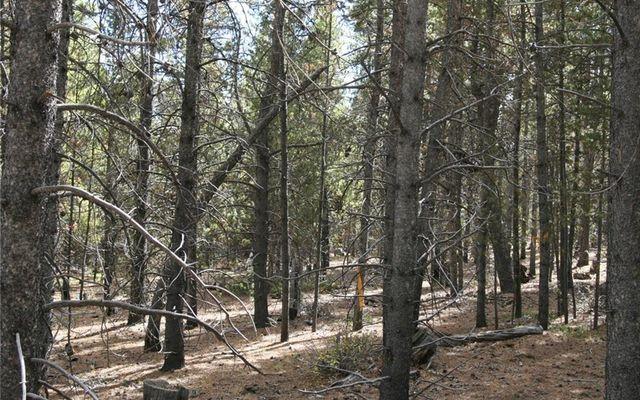 1525 Beaver Creek Road - photo 14