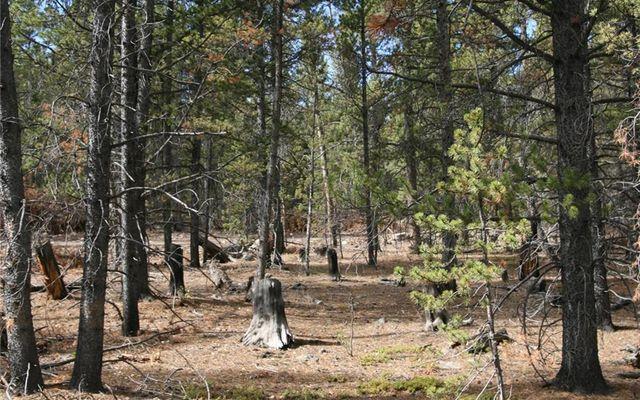 1525 Beaver Creek Road - photo 17