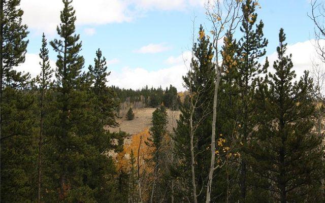 1525 Beaver Creek Road - photo 20