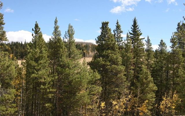 1525 Beaver Creek Road - photo 3