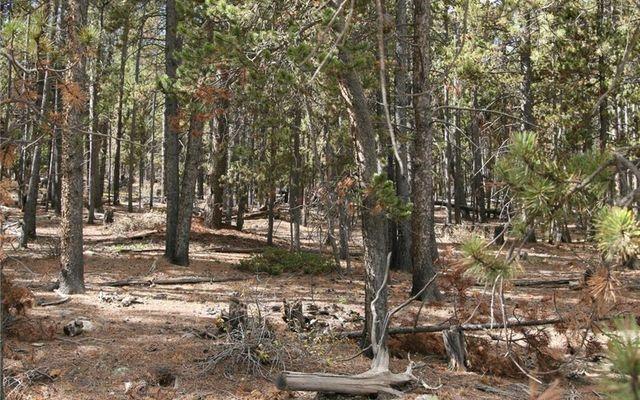 1525 Beaver Creek Road - photo 4