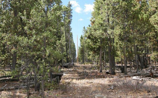 1525 Beaver Creek Road - photo 6
