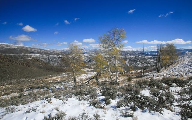 1 Ouray Ln, WC 31 Wolcott, CO 81655