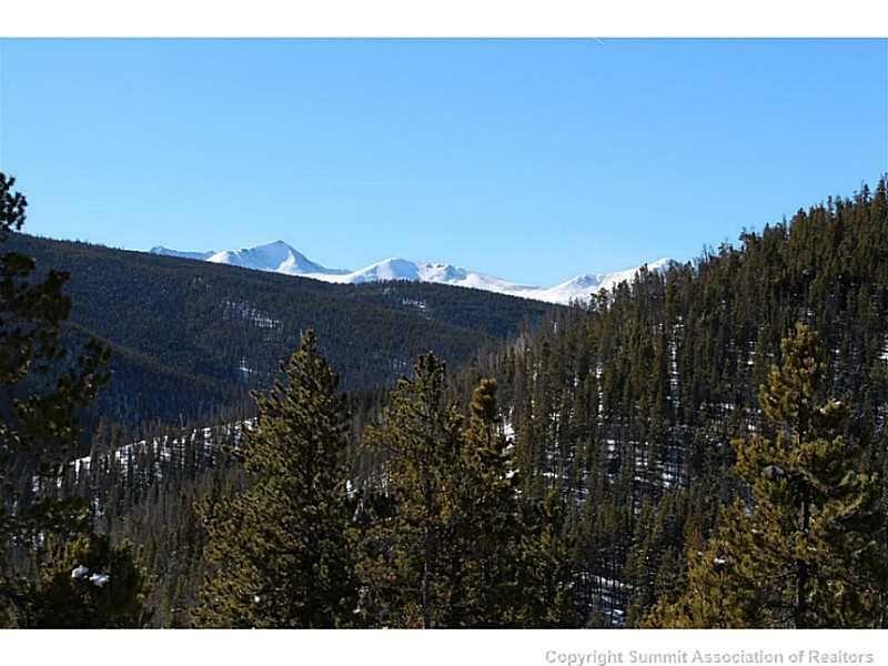 76 Bergen TRAIL BRECKENRIDGE, Colorado 80424