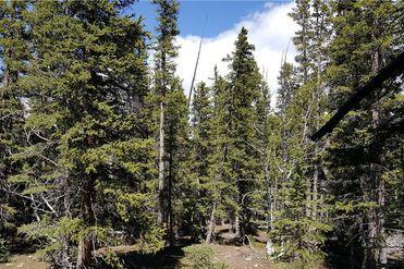 85 PUMA PLACE FAIRPLAY, Colorado 80440 - Image 1