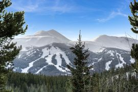 1035 Boreas Pass ROAD BRECKENRIDGE, Colorado 80424 - Image
