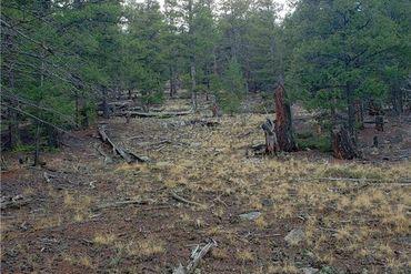 Lot 17 Redhill ROAD FAIRPLAY, Colorado - Image 9