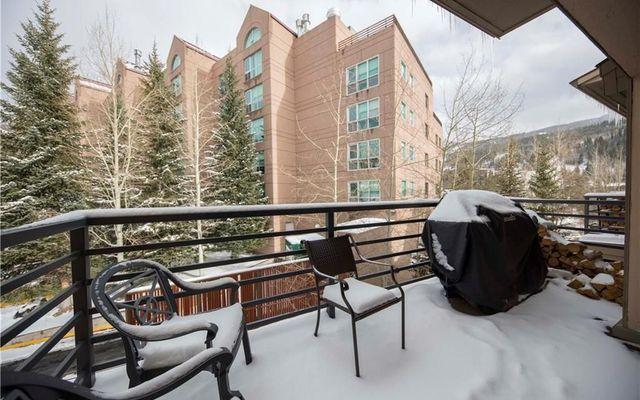 Snowdance Manor Condo # 406 - photo 15