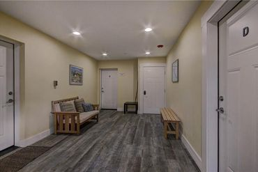 520 S French STREET # 1D BRECKENRIDGE, Colorado - Image 31