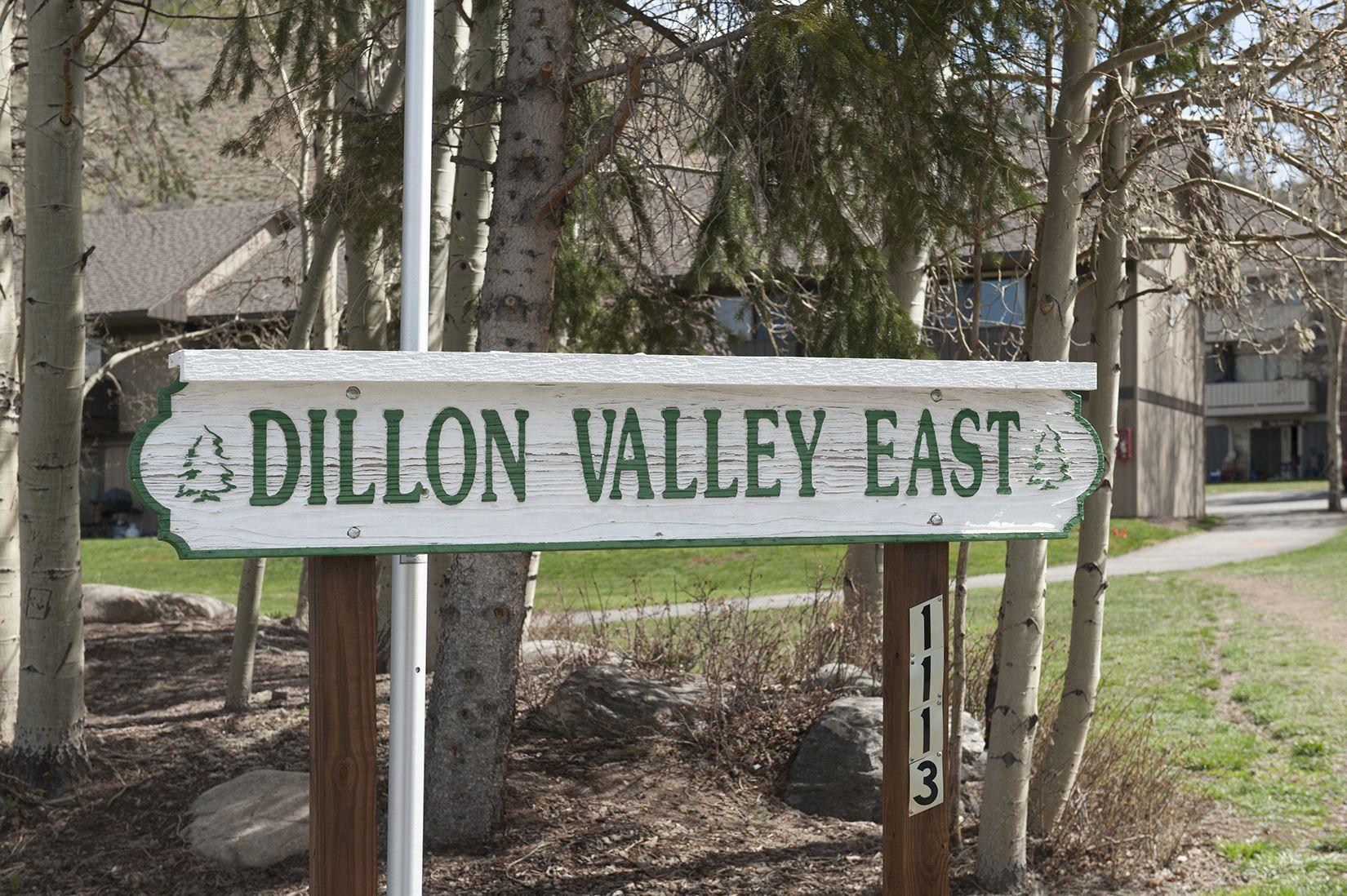 1153 Straight Creek DRIVE # 103 DILLON, Colorado 80435