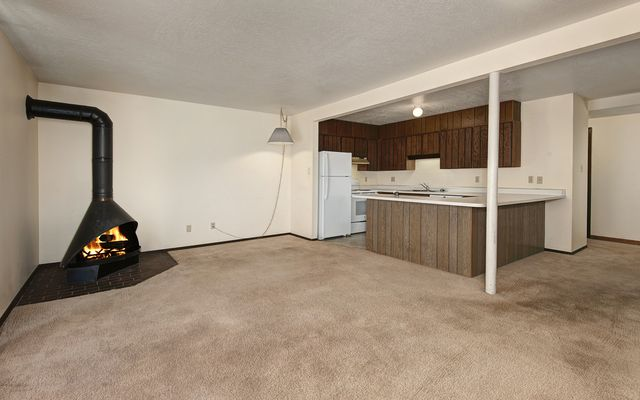 Dillon Valley East Condo # 103 - photo 2
