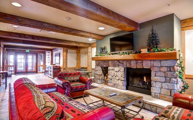 Buffalo Lodge And The Dakota Condos # 8511 - photo 27
