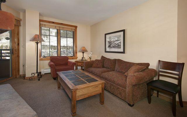 Buffalo Lodge And The Dakota Condos # 8511 - photo 8