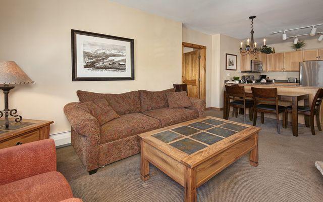 Buffalo Lodge And The Dakota Condos # 8511 - photo 9