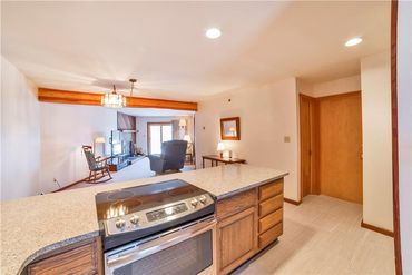 94300 Ryan Gulch ROAD # 304 SILVERTHORNE, Colorado - Image 10
