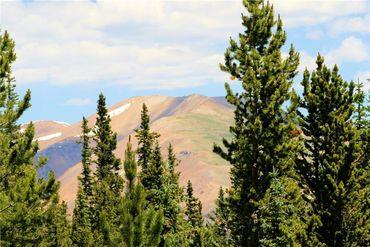 369 Prunes PLACE FAIRPLAY, Colorado - Image 12