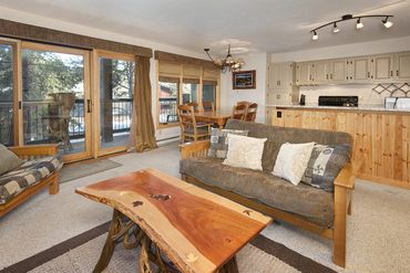 820 Columbine ROAD # 11 BRECKENRIDGE, Colorado - Image 3