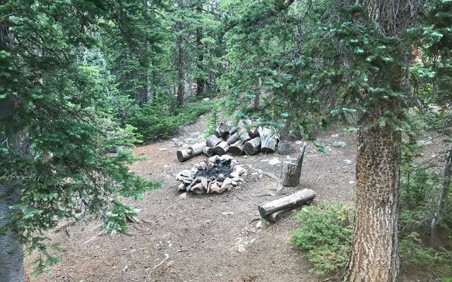 576 Gold Trail - photo 9