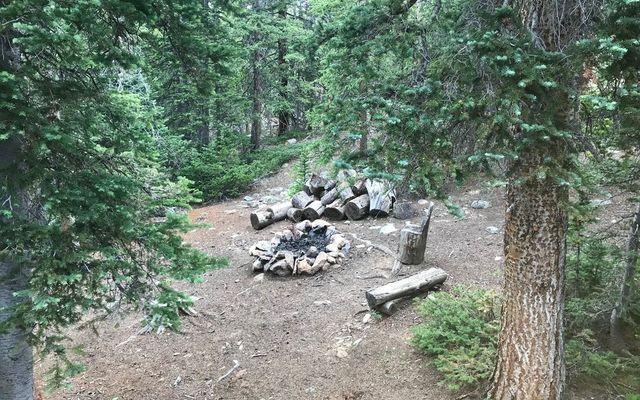 576 Gold Trail - photo 9
