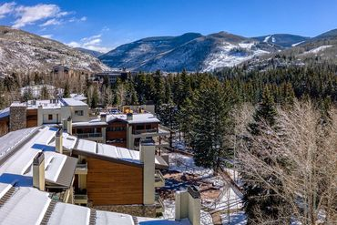 390 E Lionshead Circle # 101 Vail, CO - Image 21