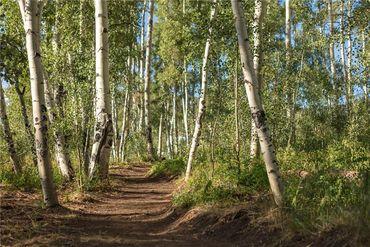 46 W BARON WAY SILVERTHORNE, Colorado - Image 16