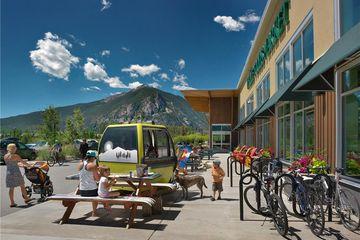 100 Basecamp WAY # 103 FRISCO, Colorado
