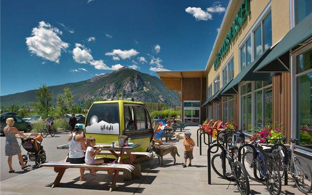 100 Basecamp WAY # 103 FRISCO, Colorado 80443