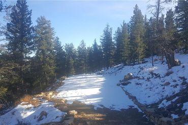 1228 MIDDLE FORK VISTA FAIRPLAY, Colorado - Image 11