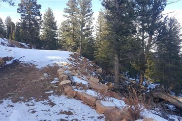 1228 MIDDLE FORK VISTA FAIRPLAY, Colorado - Image 25