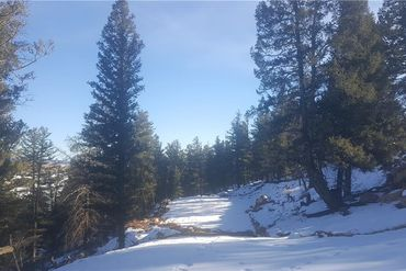 1228 MIDDLE FORK VISTA FAIRPLAY, Colorado - Image 9