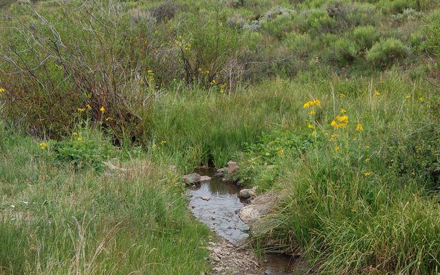 - Horse Mountain/Willow Creek - - photo 9