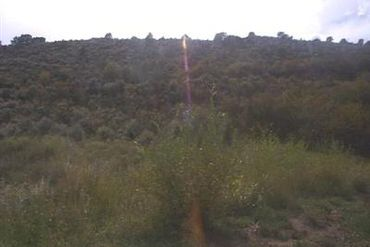 2556 Eagle Ranch Road Eagle, CO - Image 4