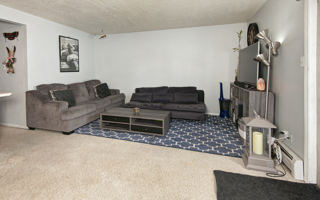 Dillon Valley East Condo # 106 - photo 19