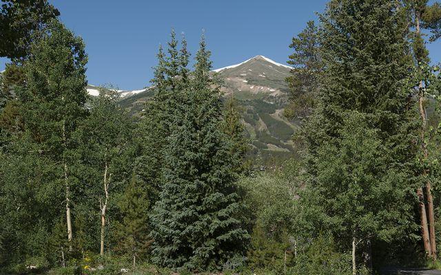 114 N Gold Flake TERRACE N BRECKENRIDGE, Colorado 80424