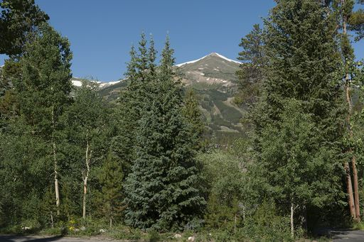 114 N Gold Flake TERRACE N BRECKENRIDGE, Colorado 80424 - Image 4