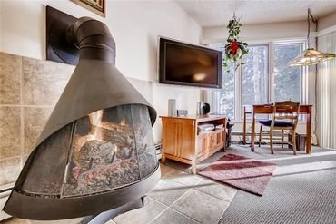 1155 Ski Hill ROAD # 114 BRECKENRIDGE, Colorado - Image 7