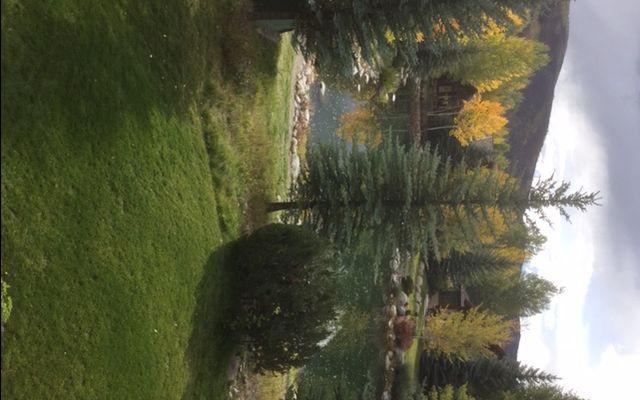 81 Mccoy Creek Drive - photo 15
