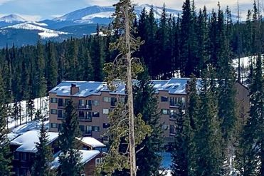 9876 Ryan Gulch ROAD # 103 WILDERNEST, Colorado 80498 - Image 1