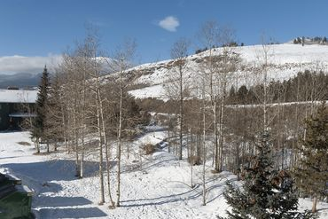 675 Straight Creek DRIVE # 307 DILLON, Colorado - Image 17