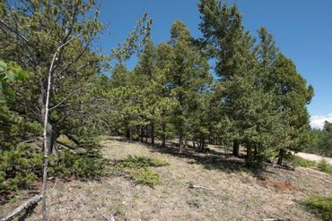 Lot 498 Redhill ROAD FAIRPLAY, Colorado - Image 12
