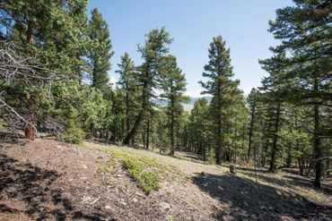 Lot 498 Redhill ROAD FAIRPLAY, Colorado - Image 14